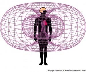 szív elektromágnes