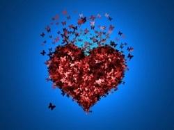 szív ereje